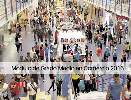 Módulo De Grado Medio En Comercio 2018 En Principado De Asturias
